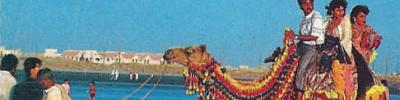 camel-ride-at-clifton.jpg ,pakistan,ht,glpt