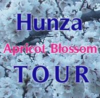 Apricot Blossom Tour