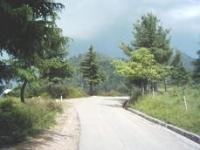 Shogran Road
