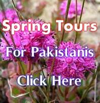 Spring Group Tour